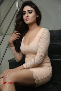 Telugu Actress Model Sony Charishta Stills in Short Dress at Rapture 2017 Grand Logo Launch  0059.JPG