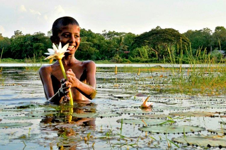 Sri Lanka'nın neresi olursa olsun her yerde doğa harikası yerler vardır.