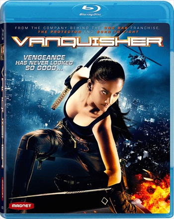 Vanquisher 2009 Dual Audio Hindi 720p BluRay 950mb