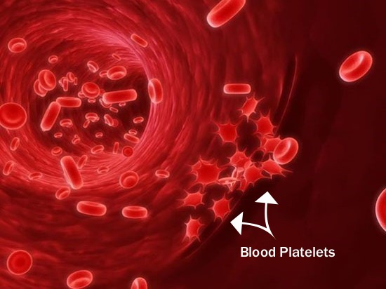 Natural Ways To Increase Platelets Count In Blood Best