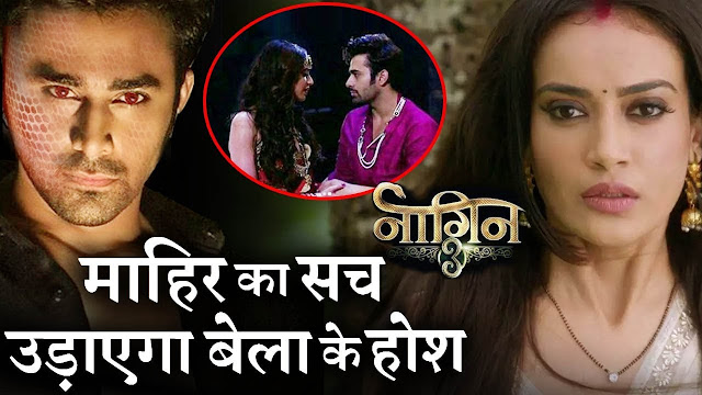 Naagin 3 Spoiler Alert : Vish in dilemma to reveal the truth to Bela