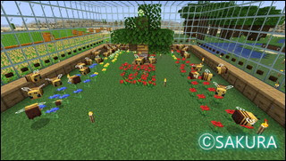 Minecraft ガラスハウスのミツバチ飼育場 養蜂箱のレイアウトや花の配置