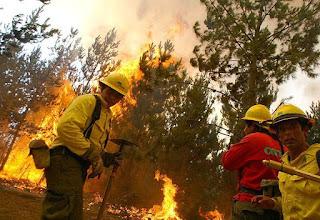 CONAF levanta prohibición de quemas agrícolas en tres regiones del país