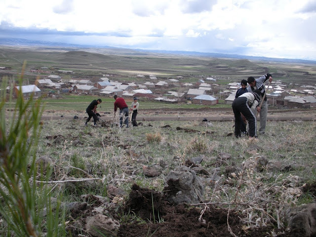 Argentina establecerá granjas en Shirak