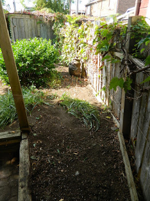 Little Italy Palmerston Toronto Back Yard Garden Cleanup after by Paul Jung Gardening Services