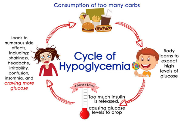 Cycle of hypoglycemia