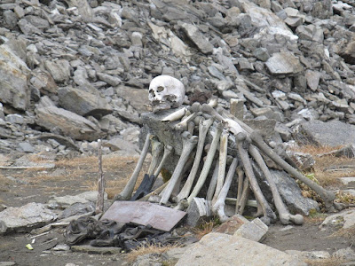 https://2.bp.blogspot.com/-fVzPPHLA6TM/V9ao9YvTt4I/AAAAAAAAS2Y/fSRIXhbyEEEwdeU900EFAqPCF7D89boZwCLcB/s1600/Skeletons-at-Roopkund-Lake.jpg