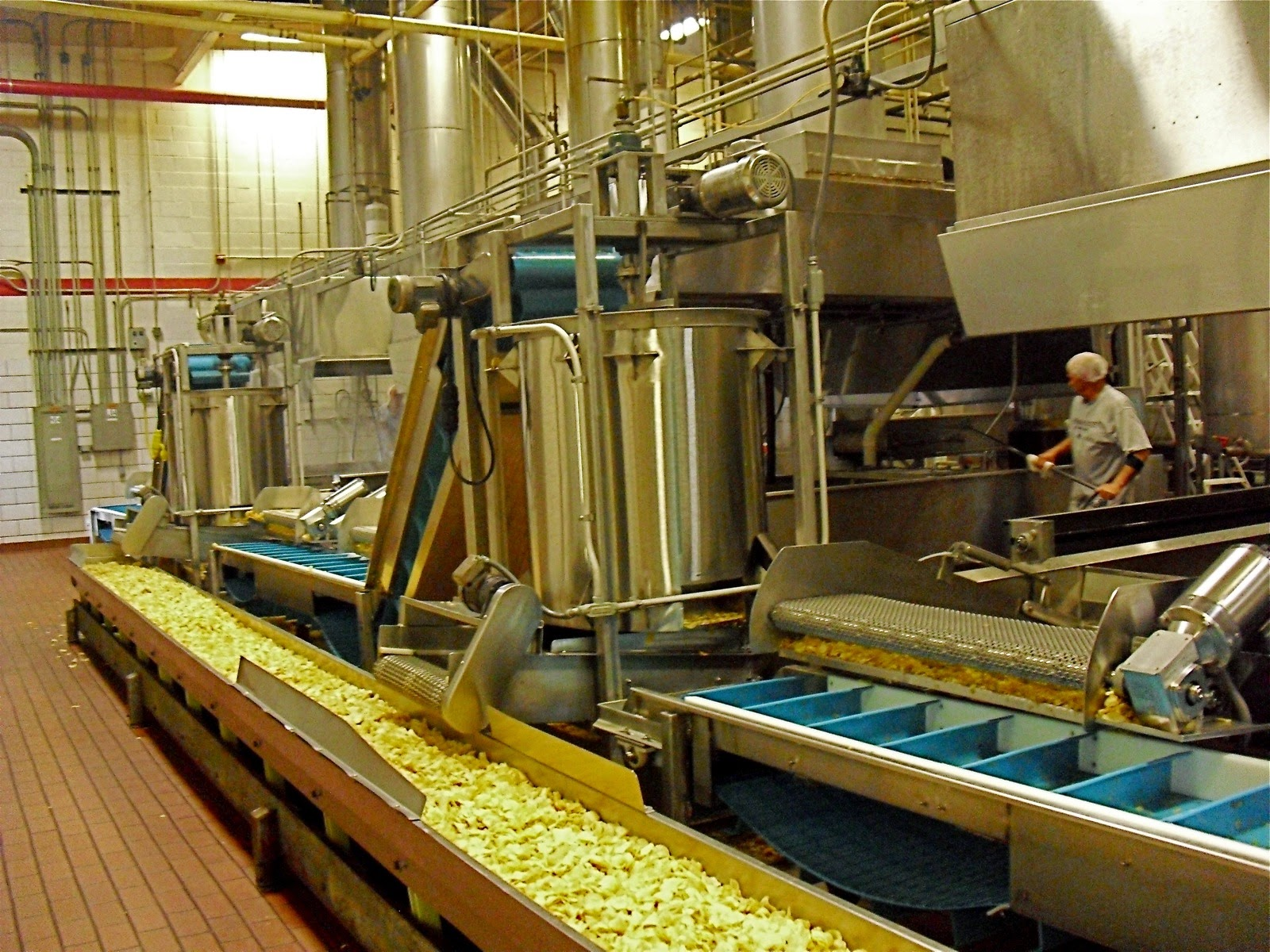 Processing the potatoes in a factory