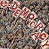 La necessità della democrazia rappresentativa