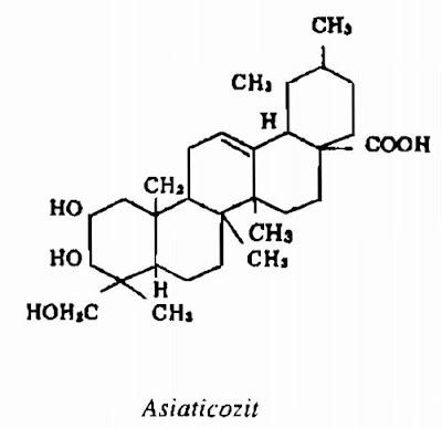 Thành phần hóa học Rau Má - Centella asiatica - Nguyên liệu làm thuốc Chữa Cảm Sốt