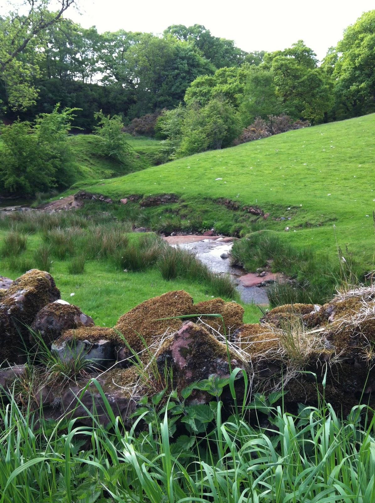 Marjorie deluca 39 s storyworld the real garden of eden - Where is the garden of eden today ...