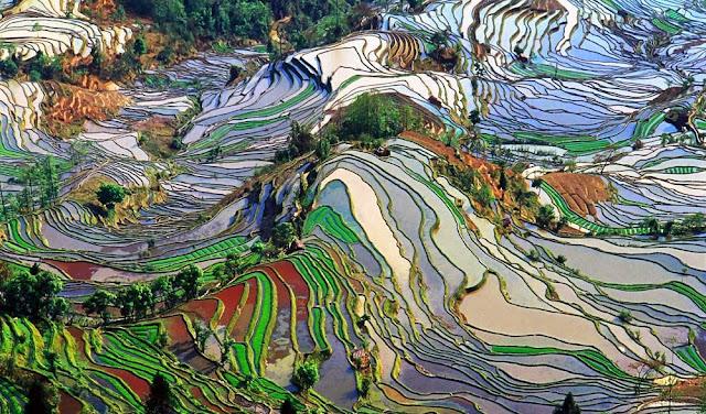 Honghe Hani terraces - China