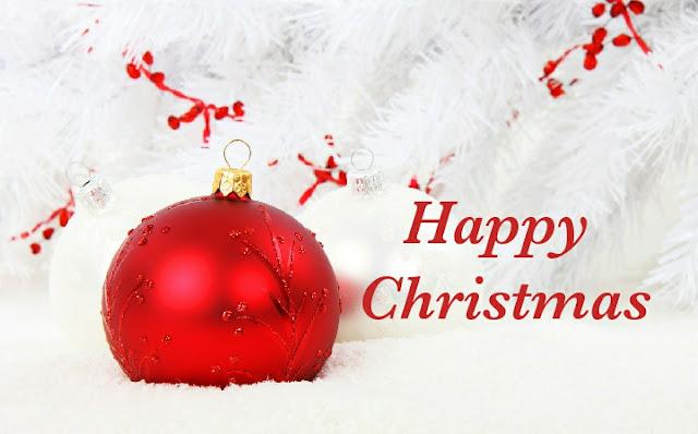 Merry-Christmas-Ya-Filthy-Animal