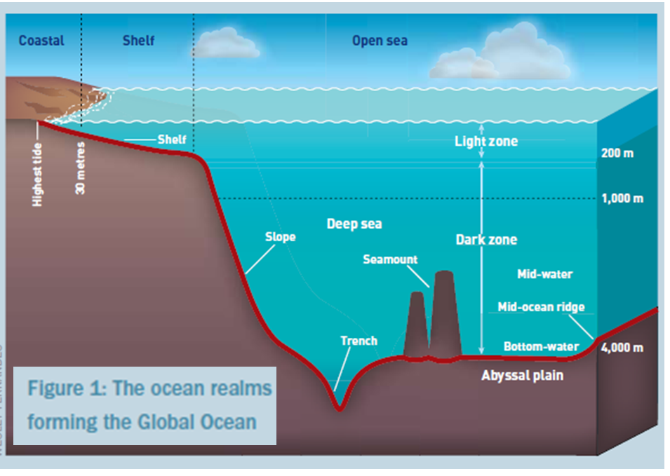 Oceans Of The World And The Facts Of Major Oceans Information On - List of all the oceans in the world