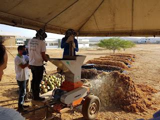 Prefeitura de Picuí é finalista nacional do Prêmio ODS Brasil com o Projeto fábrica de solos