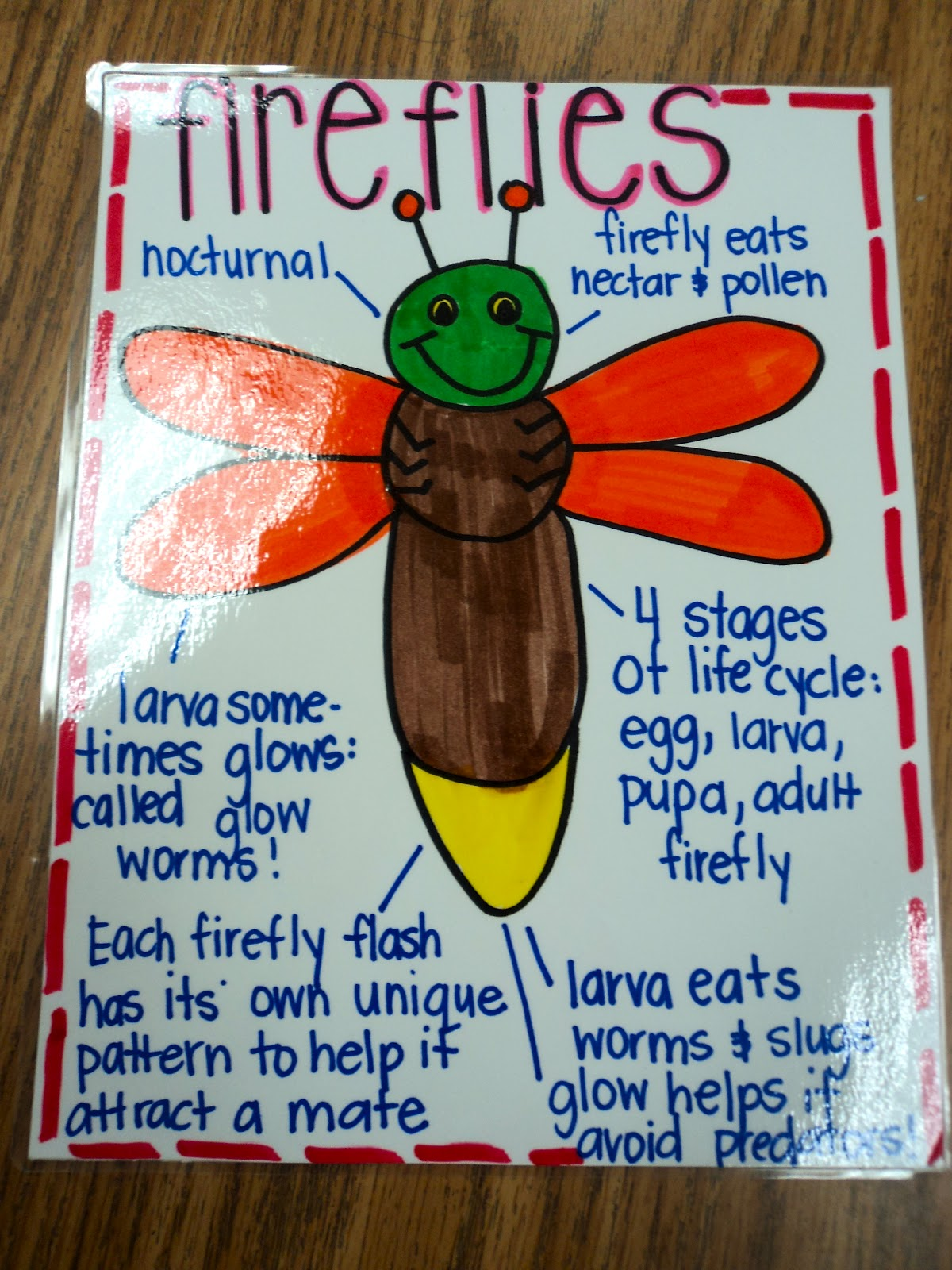 First Grade Fresh Abc Word Study Task Cards And Anchor