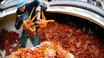 How to Buy Crab Meat