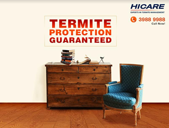 HICARE launches its revolutionary TERMIN-8 treatment for termite control