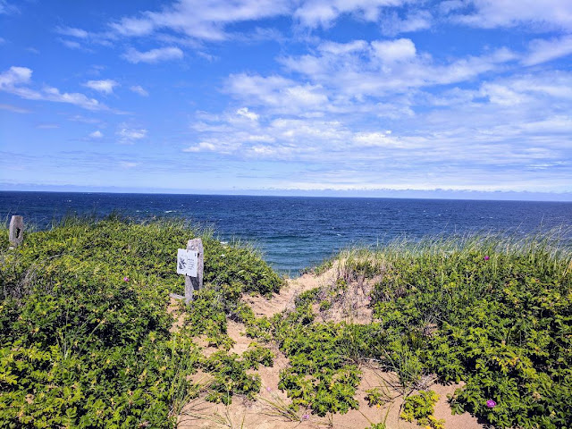 Cape Cod 2018 --Part One: --How Did I Get Here? My Amazing Genealogy Journey