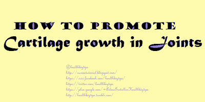 How to promote cartilage growth in joints