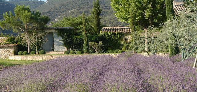 Provence - You May Be Wandering blog