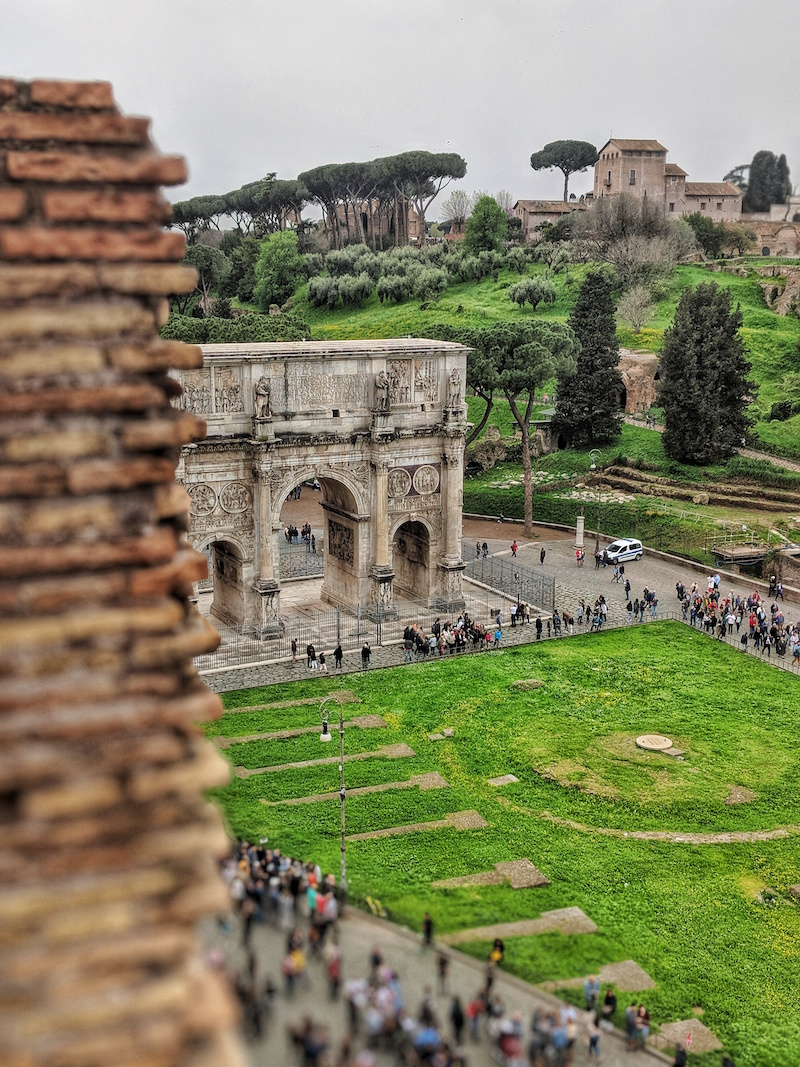 The view of Palatine Hill from the Colosseum.