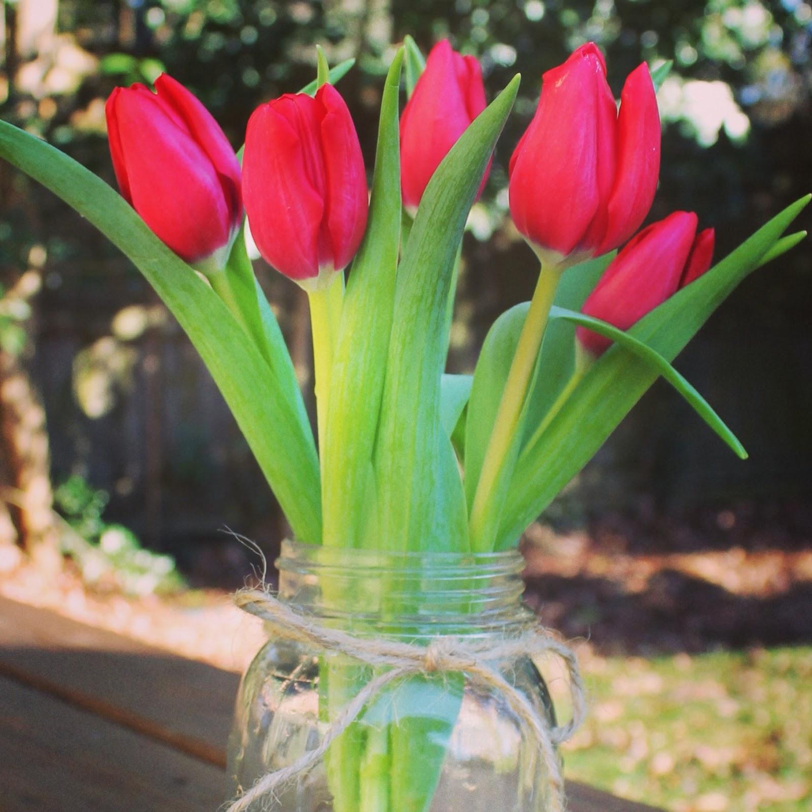 Get Your Tulips to Tango {Part II}