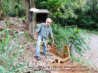 O apicultor e pesquisador Mitsiotis alerta para o risco de queda de árvore com raízes expostas na Vila Nova Jaraguá