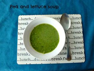 Soup Kitchen Fairy Neopets