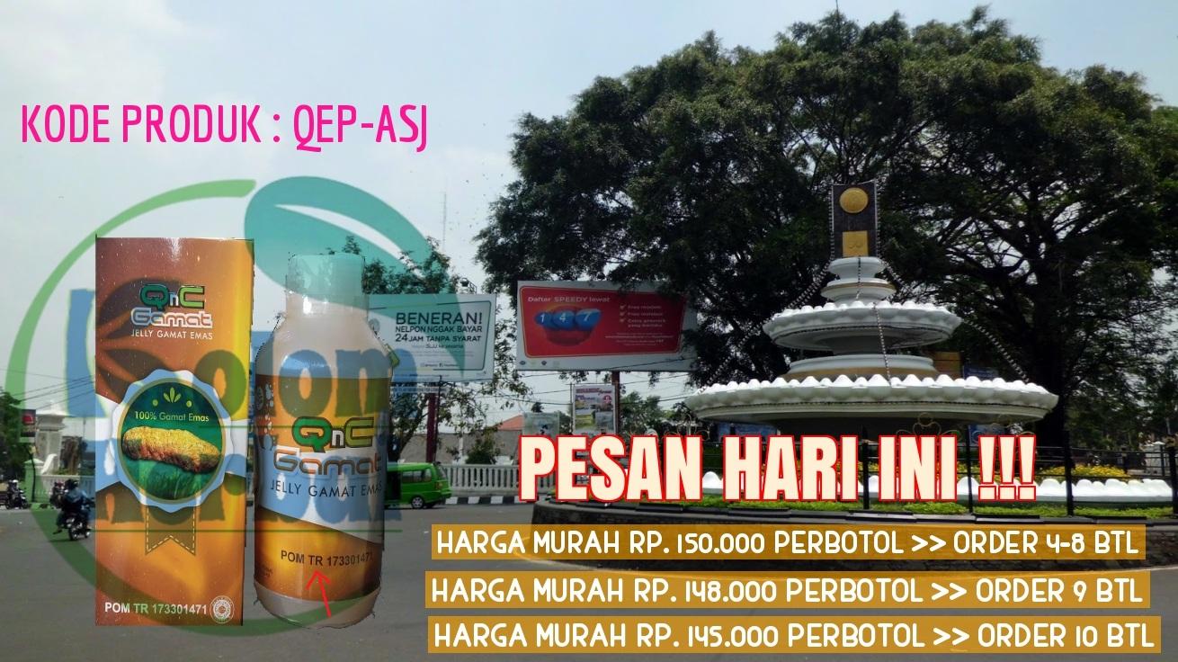 Agen Qnc Jelly Gamat Di Sukabumi
