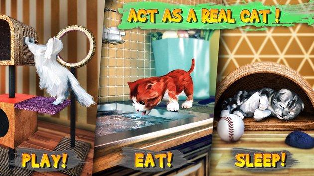 Cat Simulator Game Android untuk Kucing