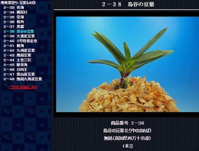 http://www.fuuran.jp/2-38.html
