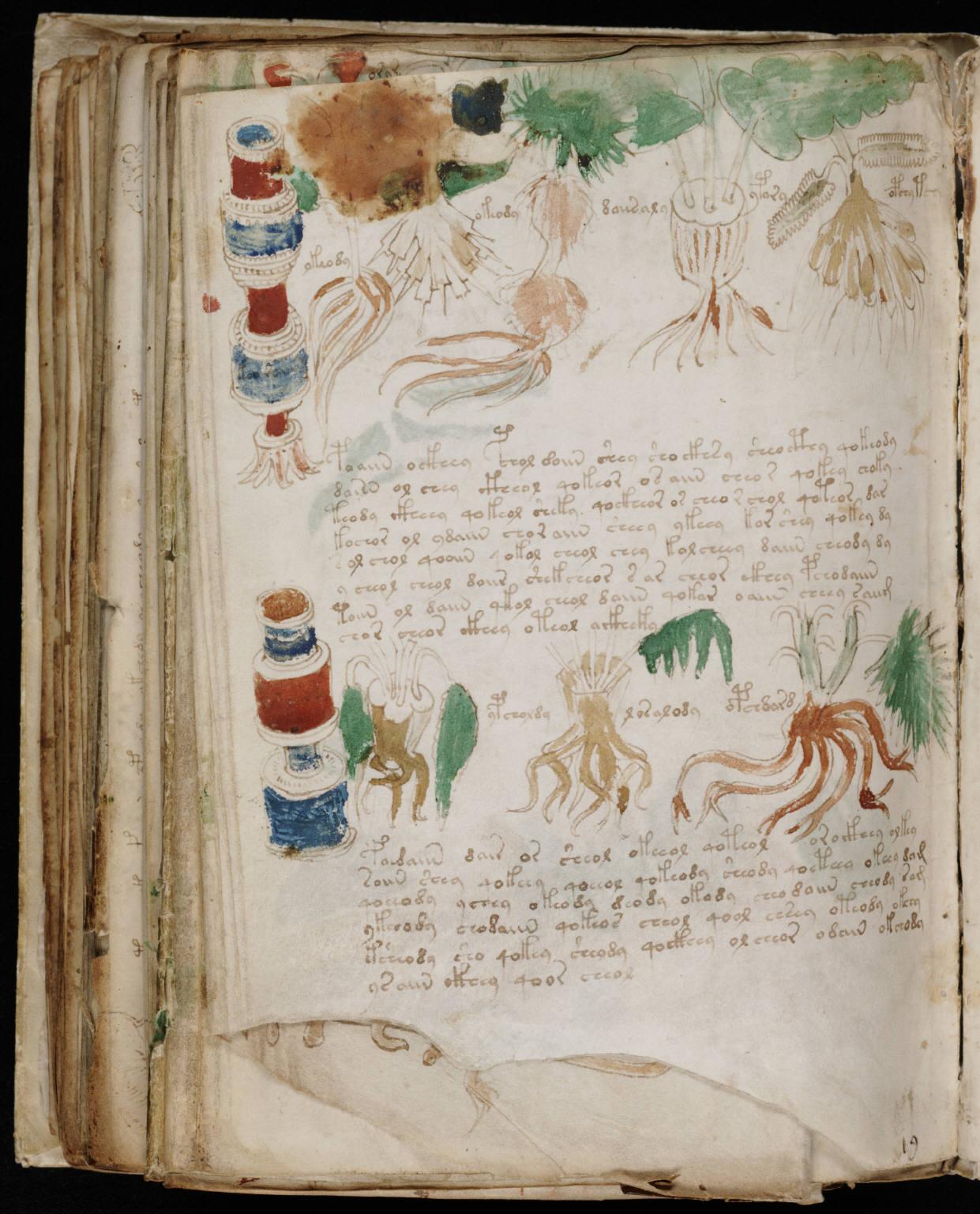 manuscrito180