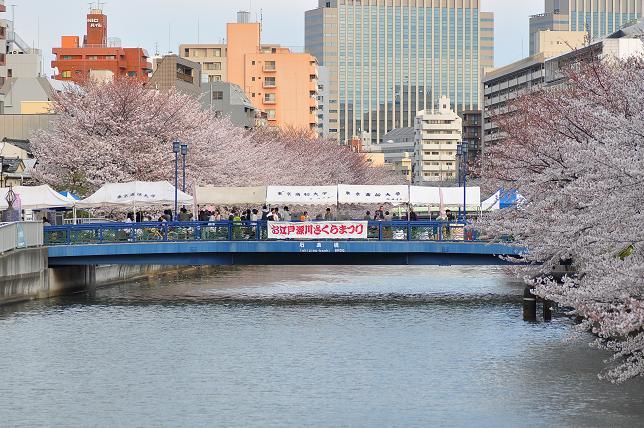 Oedo Fukagawa Sakura Matsuri (Cherry Blossom Festival), Tokyo