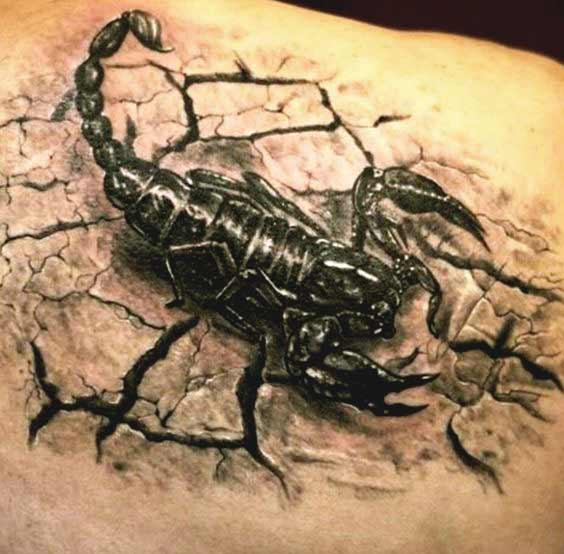 scorpion tattoos design on shoulder