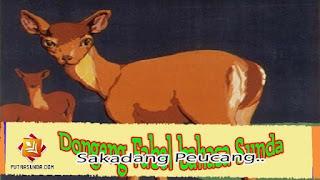 Dongeng Fabel Pendek Bahasa Sunda Sakadang Peucang Lucu!