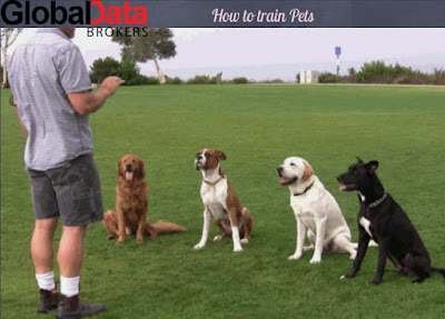 how to train pet owners
