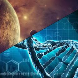 Последние научные открытия 2018 года