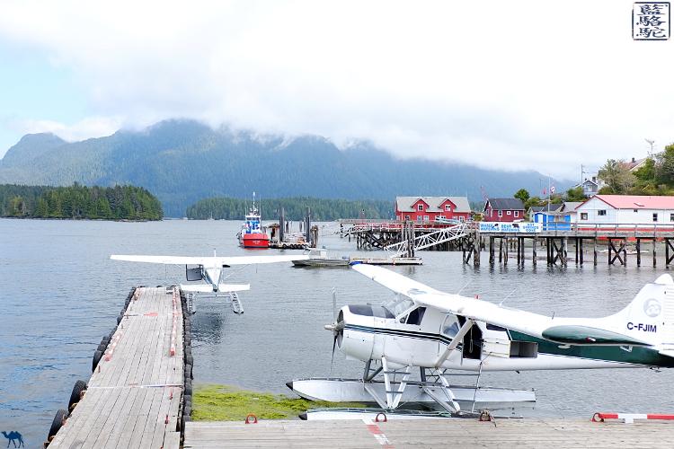 Le Chameau Bleu - Blog Voyage Tofino Canada - Baie de Tofino Colombie Britannique - Canada
