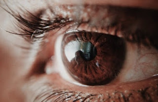 How Alzheimer's Disease Impacts Vision