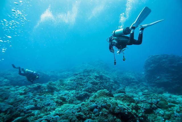 Scuba Diving, Montserrat