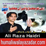 http://www.humaliwalayazadar.com/2014/10/ali-raza-haidri-nohay-2015.html