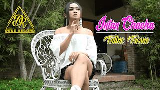 Lirik Lagu Taline Tresno - Intan Chacha