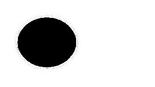 3 - Circulo TR e branco 8 png