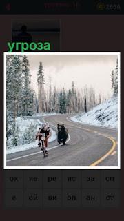 по дороге за велосипедистом бежит медведь