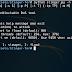 Stinger-Tor Tor DoS tool