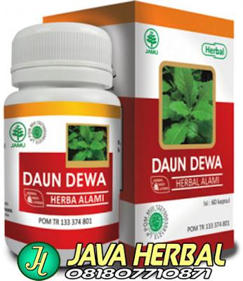 obat herbal untuk mengobati liver darah tinggi stroke kencing manis radang pankreas