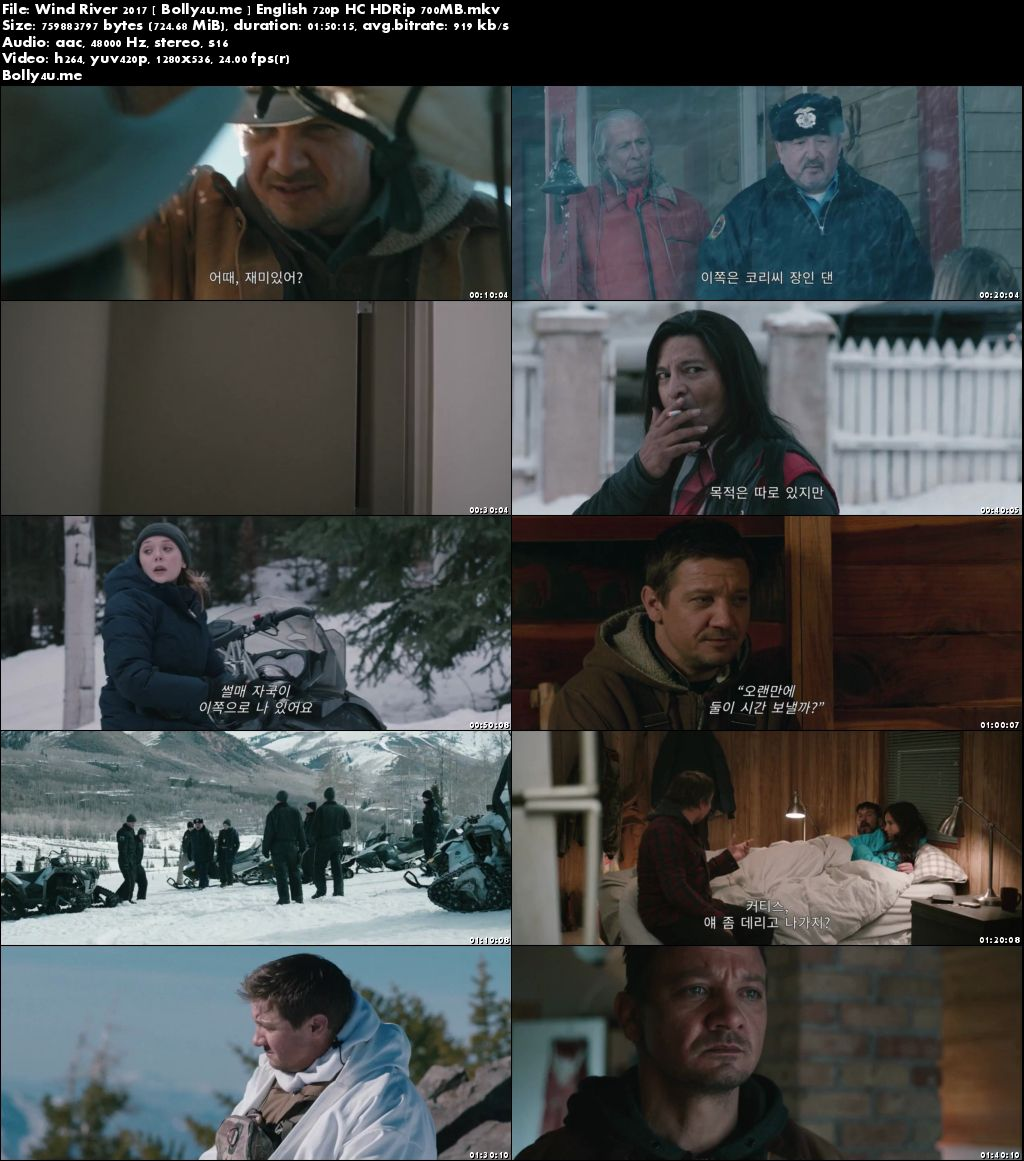 Wind River 2017 HC HDRip 300MB English Movie 480p Download