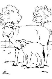 Sheep Familly Coloring Pages At Farm