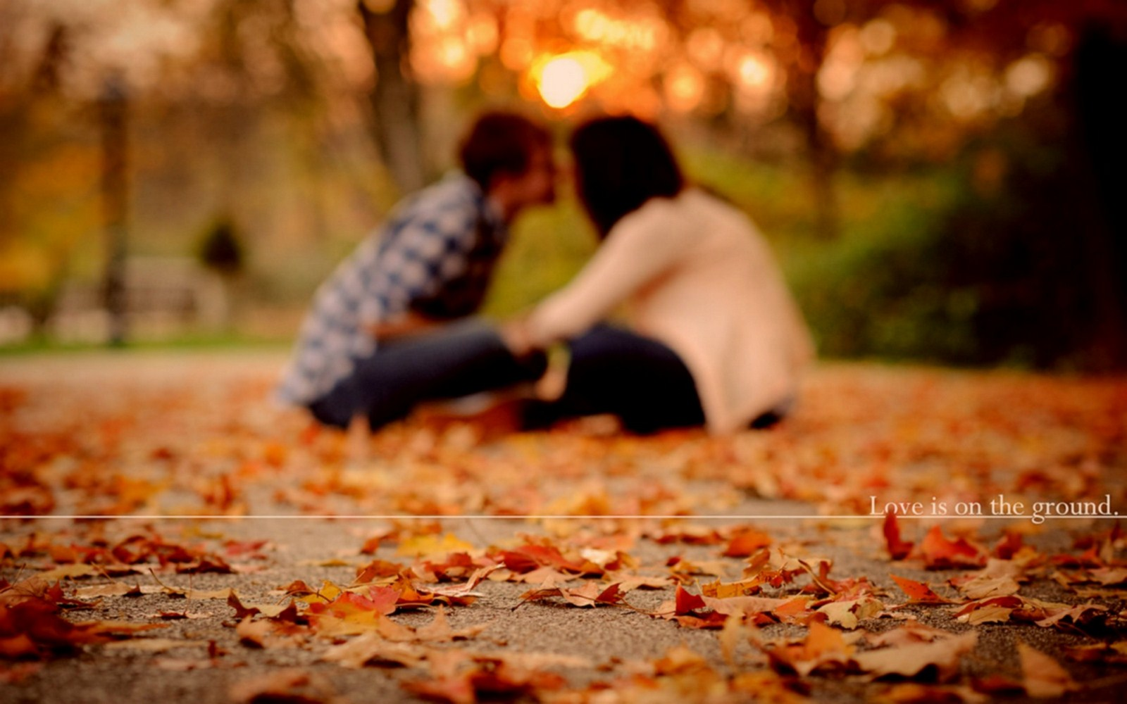 http://2.bp.blogspot.com/-faFR50MA-ho/UFldUwgXwAI/AAAAAAAAAZg/jVZaEPFkV6o/s1600/Mood+Love+Couple+Boy+And+Girl+Autumn+Leaf+Park+Photo+HD+Wallpaper+-+LoveWallpapers4u.Blogspot.Com.jpg